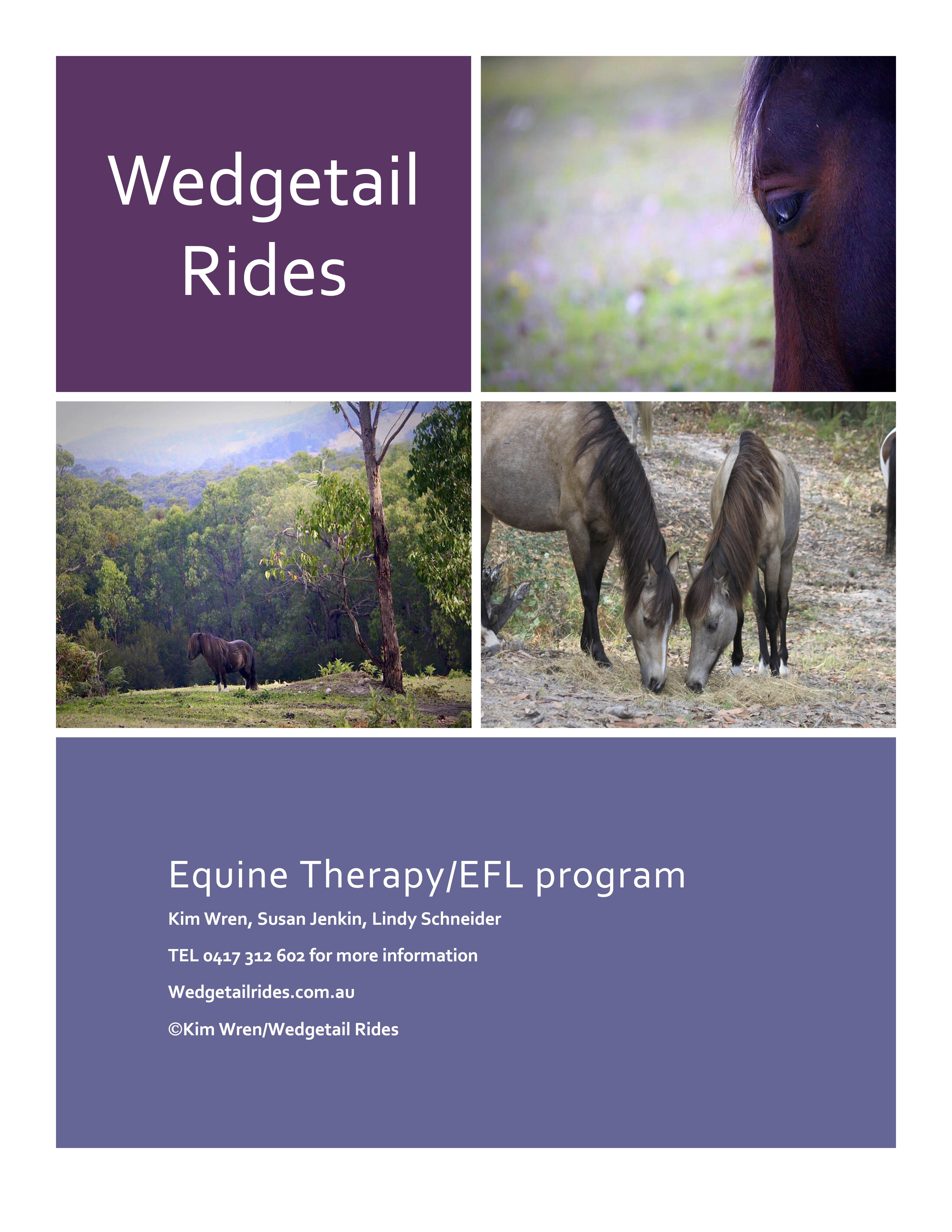 flyerWedgetail Rides pg 1