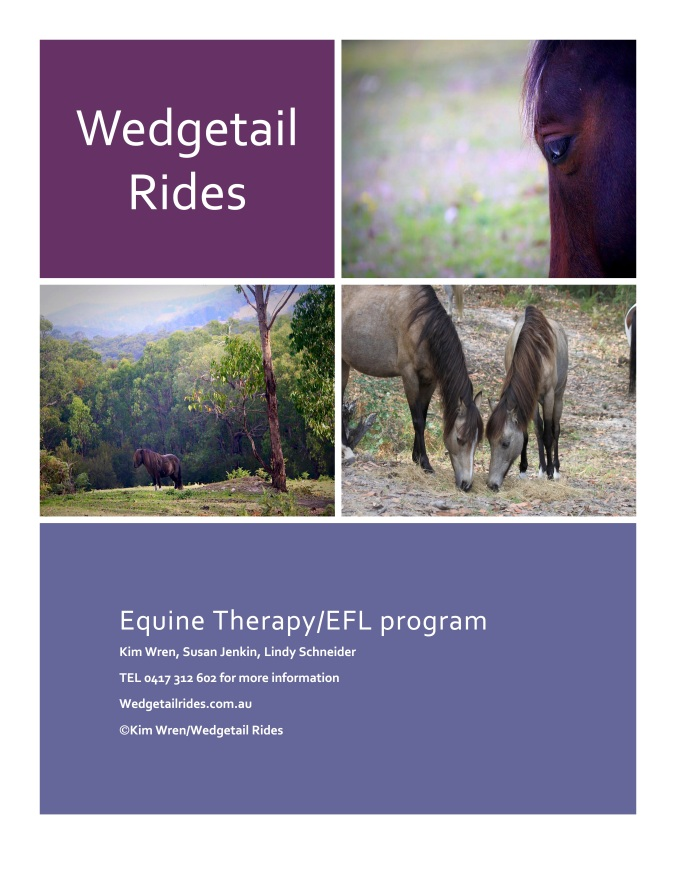 flyerWedgetail Rides pg 1